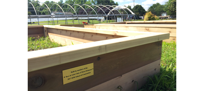 School Of Construction Planter Boxes