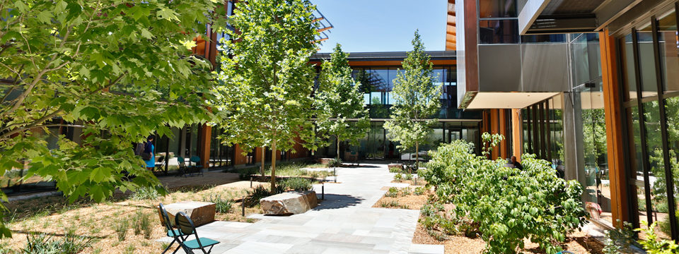 David and Lucile Packard Foundation Corporate Headquarters | DPR