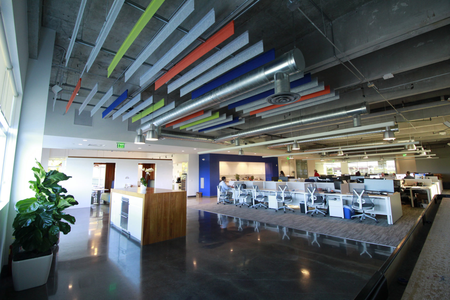 An open office with accented ceiling baffles over workstations.